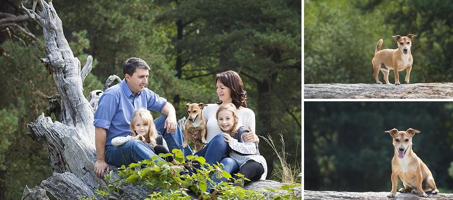 Geschwisterbilder Familienfotos Kinderbilder Geisenfeld_0009